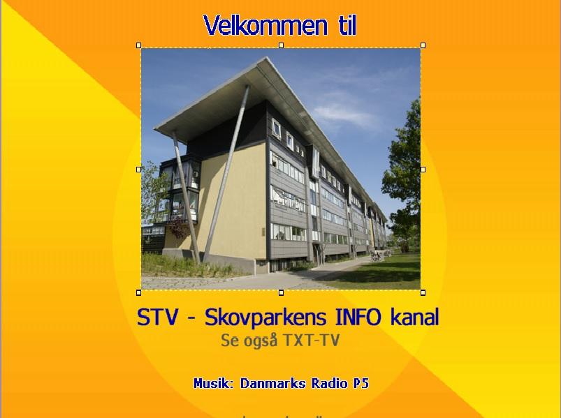 stv-info